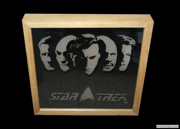 £275 Star Trek captains Mirror